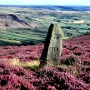 North York Moors: bed and breakfast accommodation