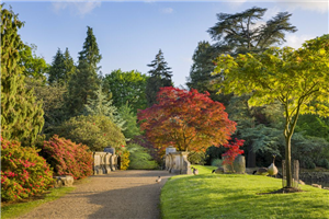 Sheffield Park & Garden