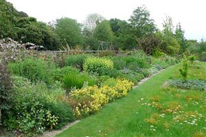 Stillingfleet Lodge Gardens and Nursery