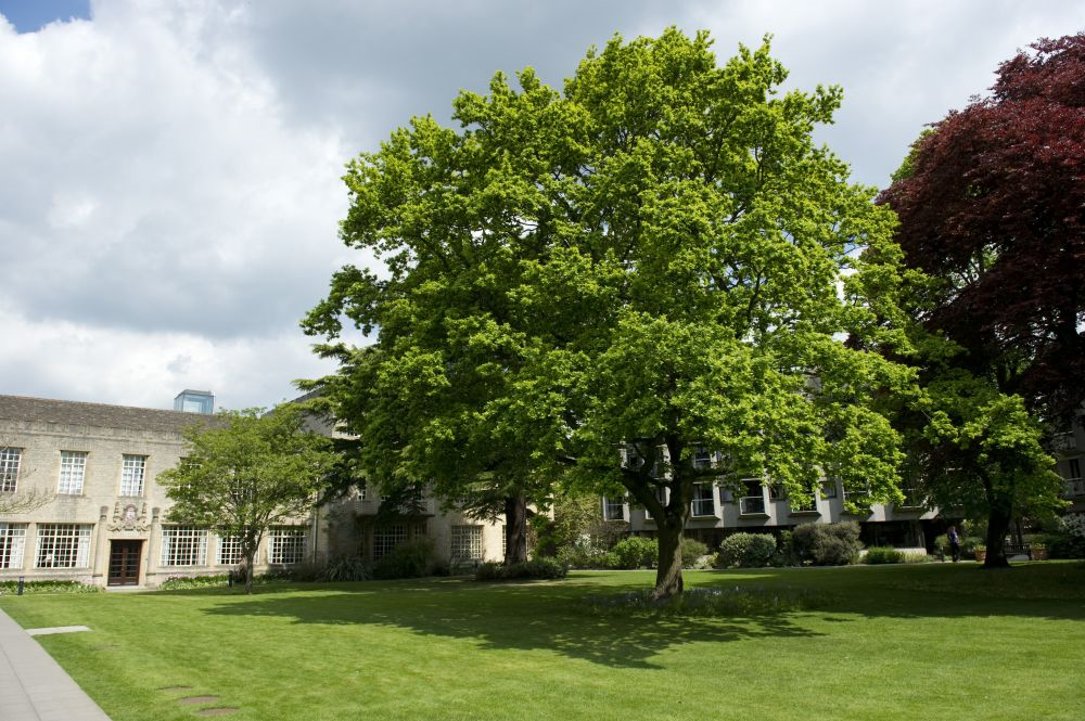 Hartland House