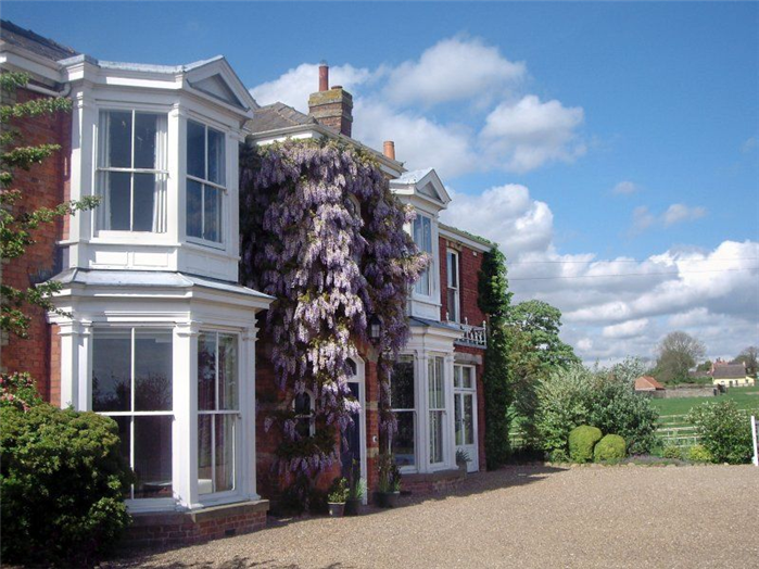 Wisteria in full glory