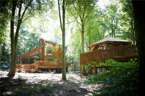 Treehouse Breaks At Forest Holidays Forest Of Dean Coleford Glamping Britain S Finest