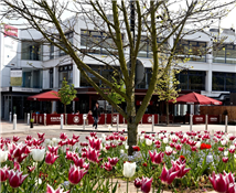 University Of Warwick Campus Coventry Coventry Hotels