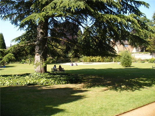 Wadham College, Oxford | Guest B&B - Book Now