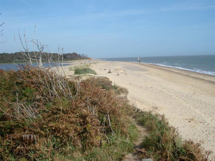 Beach Walk at Covehithe