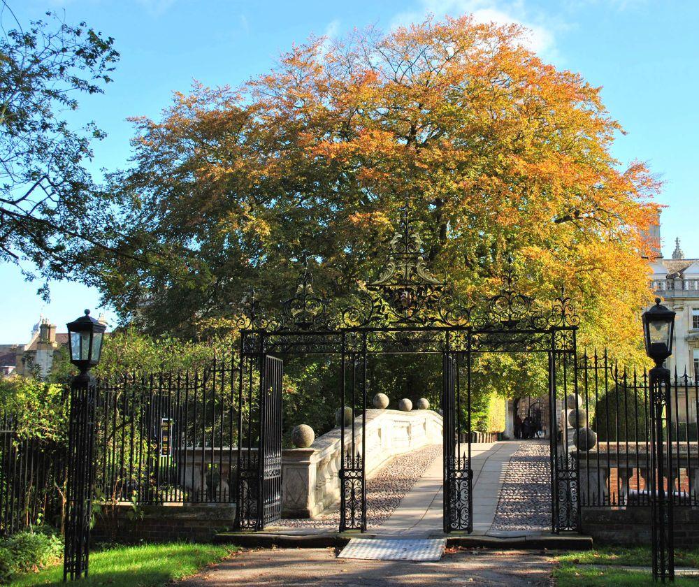 Clare College, Cambridge | Guest B&B - Jetzt buchen