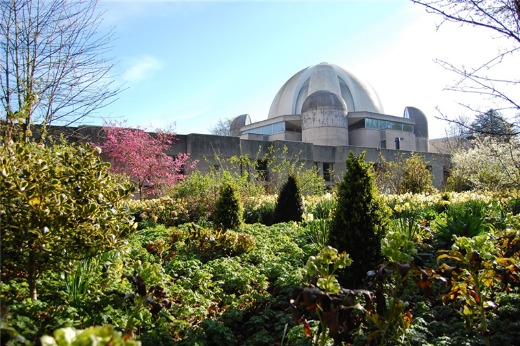 Murray Edwards Gardens