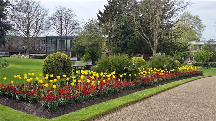 Fitzwilliam Garden