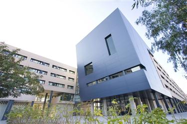 Villa universitaria alicante book visitor accommodation for Villas universitarias