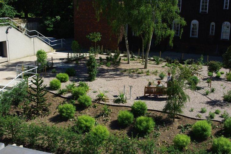 Darwin Garden