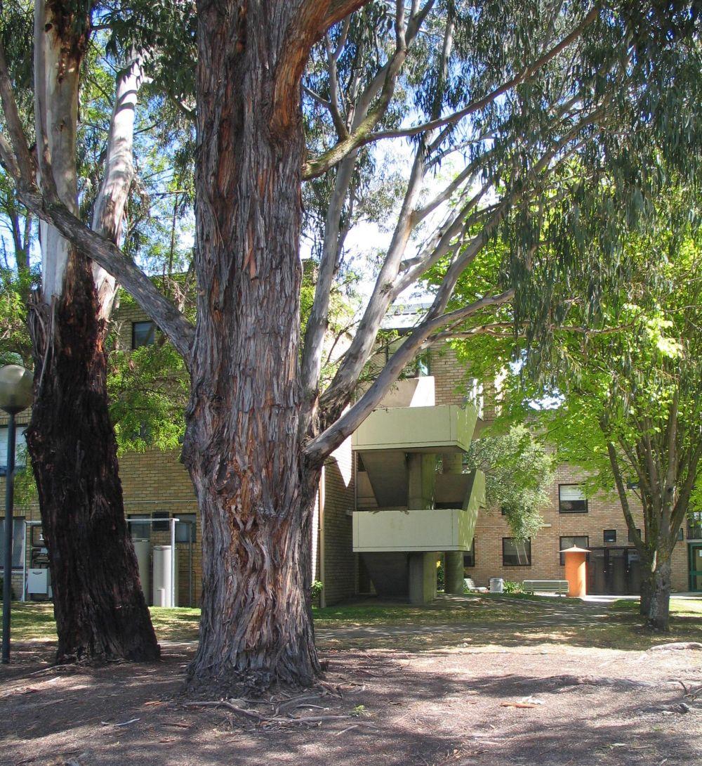 Leprena residence launceston university residence best for 3 kitchener street leeds