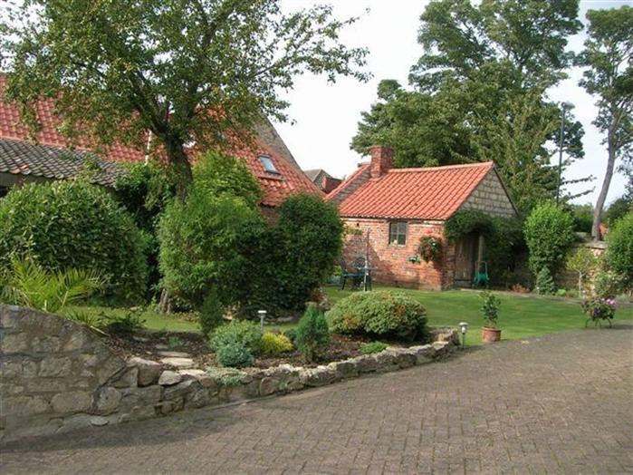Lime House Garden