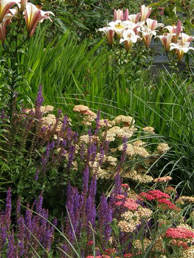 20 acres of gardens