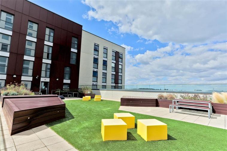 Roof Terrace Lawn